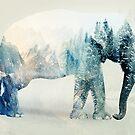 Vanishing Elephant by Vin  Zzep