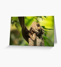 Reptilian Eye Greeting Card