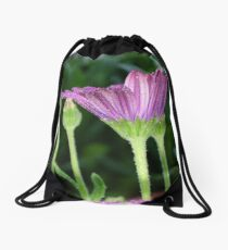 Purple And Pink Daisy Flower in Full Bloom Drawstring Bag