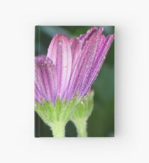 Purple And Pink Daisy Flower in Full Bloom Hardcover Journal