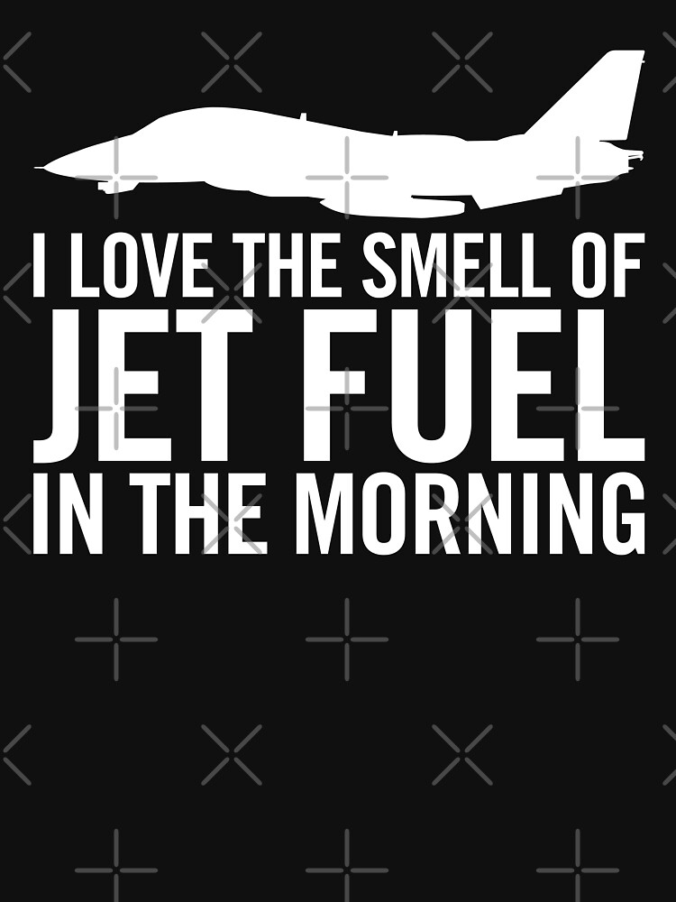 I love the smell of jet fuel in the morning F-14 Tomcat by hobrath