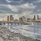 Downtown San Diego View by Rozalia Toth