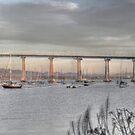 Long Long Coronado Bridge by Rozalia Toth