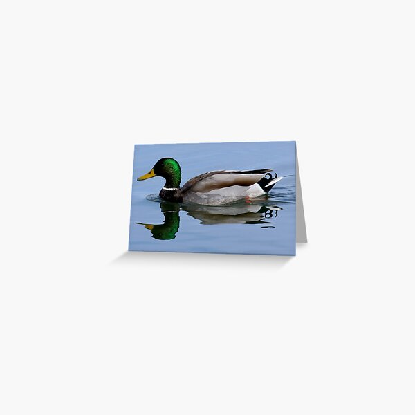Just Ducky Greeting Card