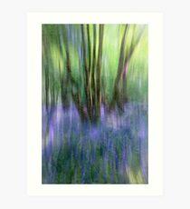 Essence Of Bluebells Art Print