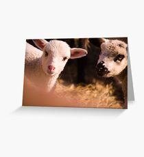 tweetletee and tweedledum Greeting Card