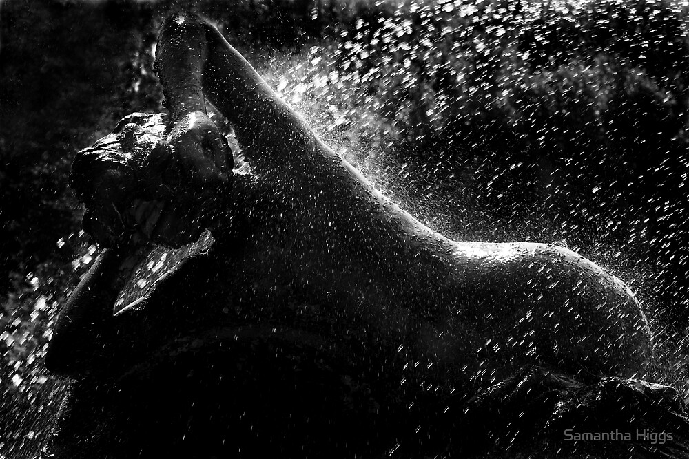 Lady in the Fountain - Piazza Della Repubblica by Samantha Higgs