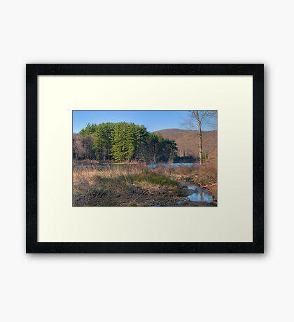 Lake Nawahunta In March Framed Print