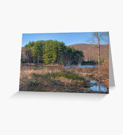 Lake Nawahunta In March Greeting Card
