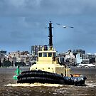 WATO TUG BOAT - NEWCASTLE HARBOUR NSW AUSTRALIA by Bev Woodman