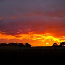 Fire in the Sky Sunset  NSW  Australia  by Kym Bradley