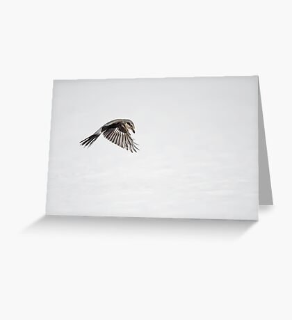 Yikes, it's a Shrike  Greeting Card