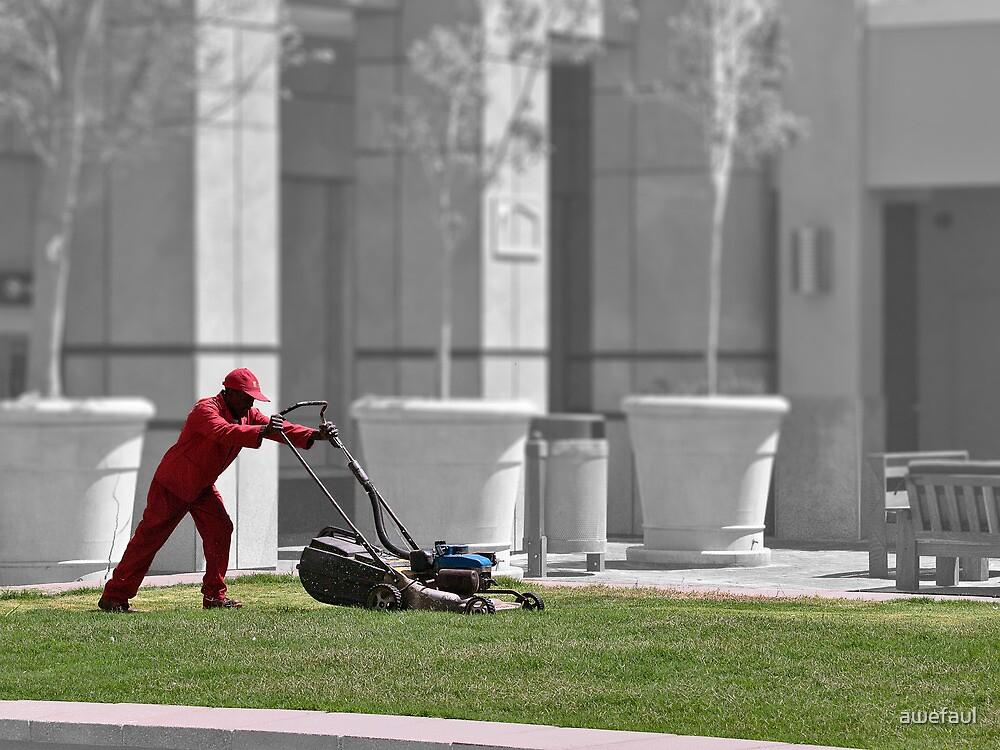 Keep on the grass by awefaul