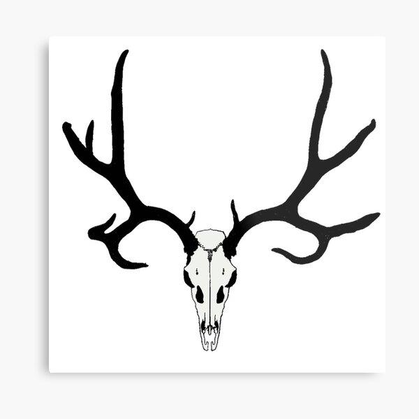 Mule Deer Skull Metal Print