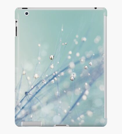 Dreamy Feather Drops iPad Case/Skin