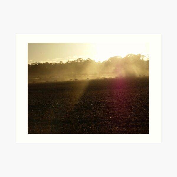 173/365 idyllic dust Art Print