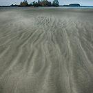 Chesterman Beach by toby snelgrove  IPA