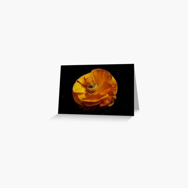 PS3-6-38075 Greeting Card