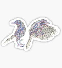 Western Scrub Jays Sticker