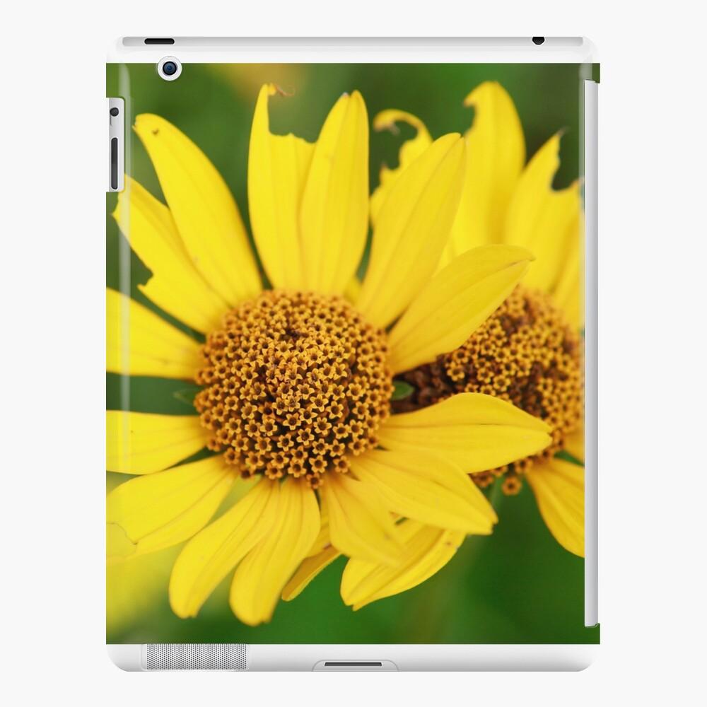 Oxeye bouquet iPad Case & Skin