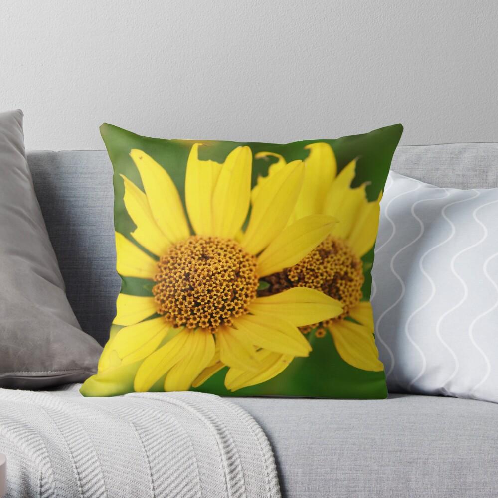 Oxeye bouquet Throw Pillow