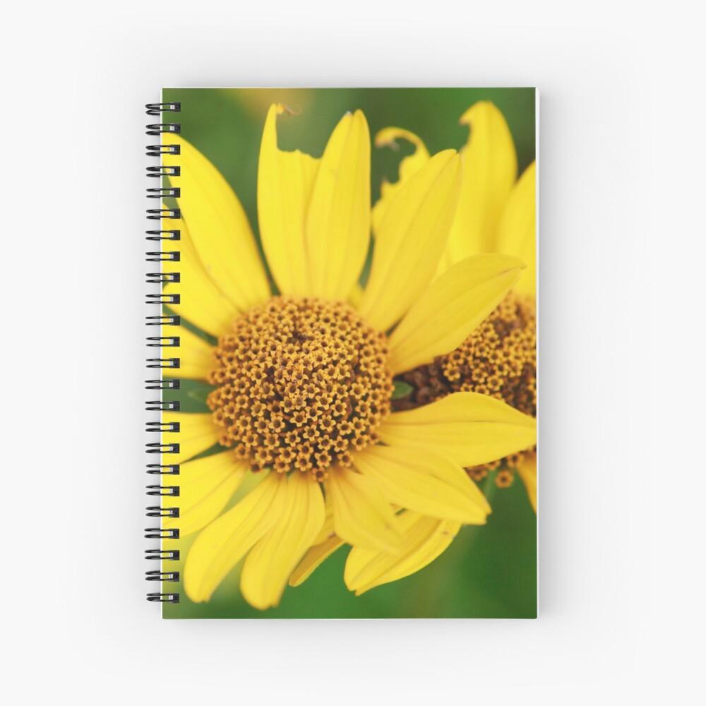 Oxeye bouquet Spiral Notebook