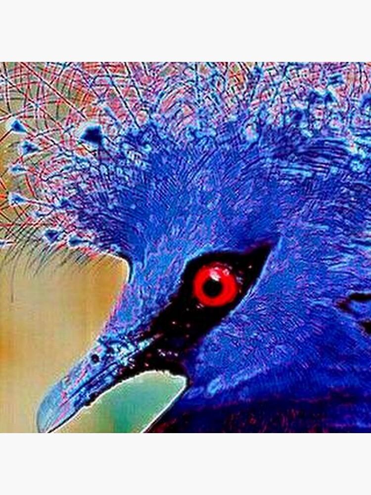 PEACOCK BIRD by michaeltodd