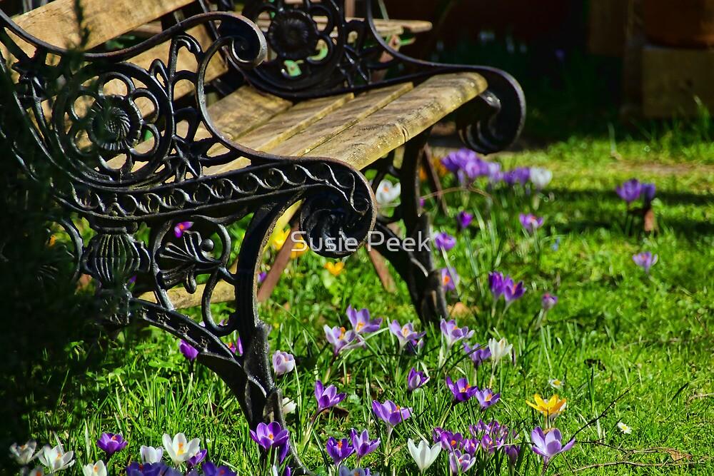 Secret Garden by Susie Peek