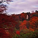 Autumn pagoda by Beverly Cash