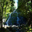 Nelson Falls by Glen Johnson