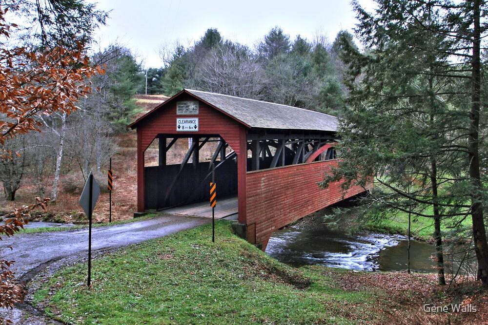 December Drizzle on the Buckhorn Bridge by Gene Walls