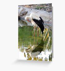 Nature Mirror Greeting Card