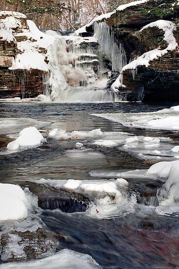 Icy Flow Below Murray Reynolds Waterfall by Gene Walls
