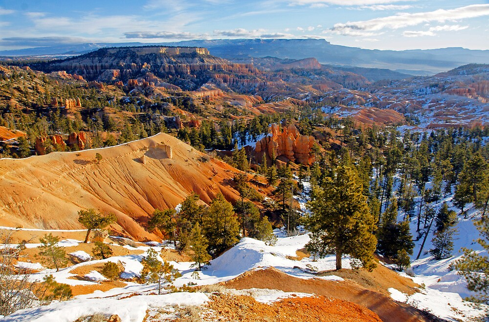 Bryce Spectacle by Harry Oldmeadow