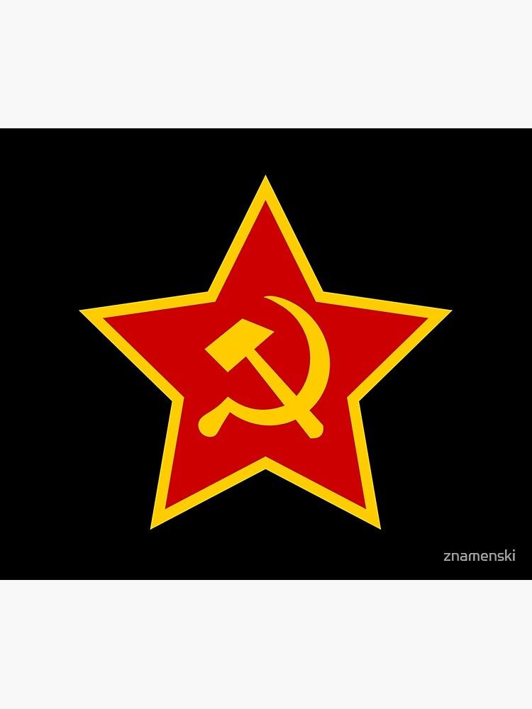 Soviet Red Army Hammer and Sickle ☭ by znamenski