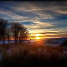 Winter sunset by Beverly Cash
