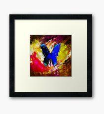 butterfly splash Framed Print