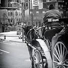 Pearl Street Stroll by Jessica Manelis