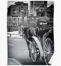 Pearl Street Stroll Poster