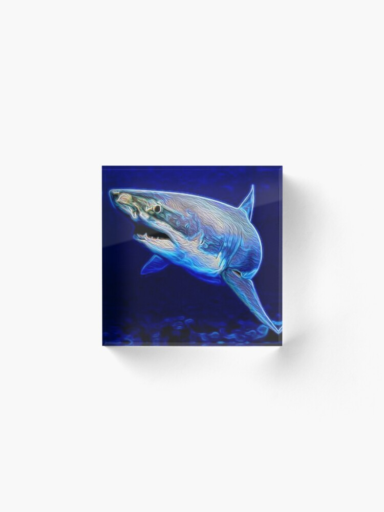 Alternate view of SHARK Acrylic Block