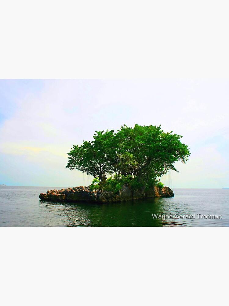 A Very Small Island by redmoondragon