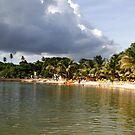 Coconut Bay, Tobago by Wayne Gerard Trotman