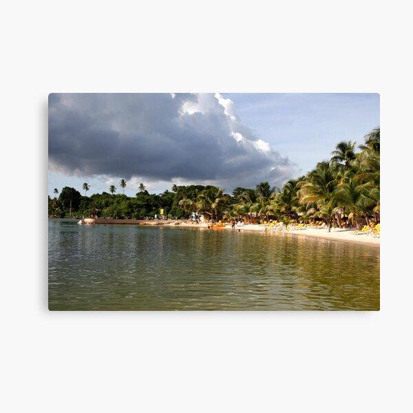 Coconut Bay, Tobago Canvas Print