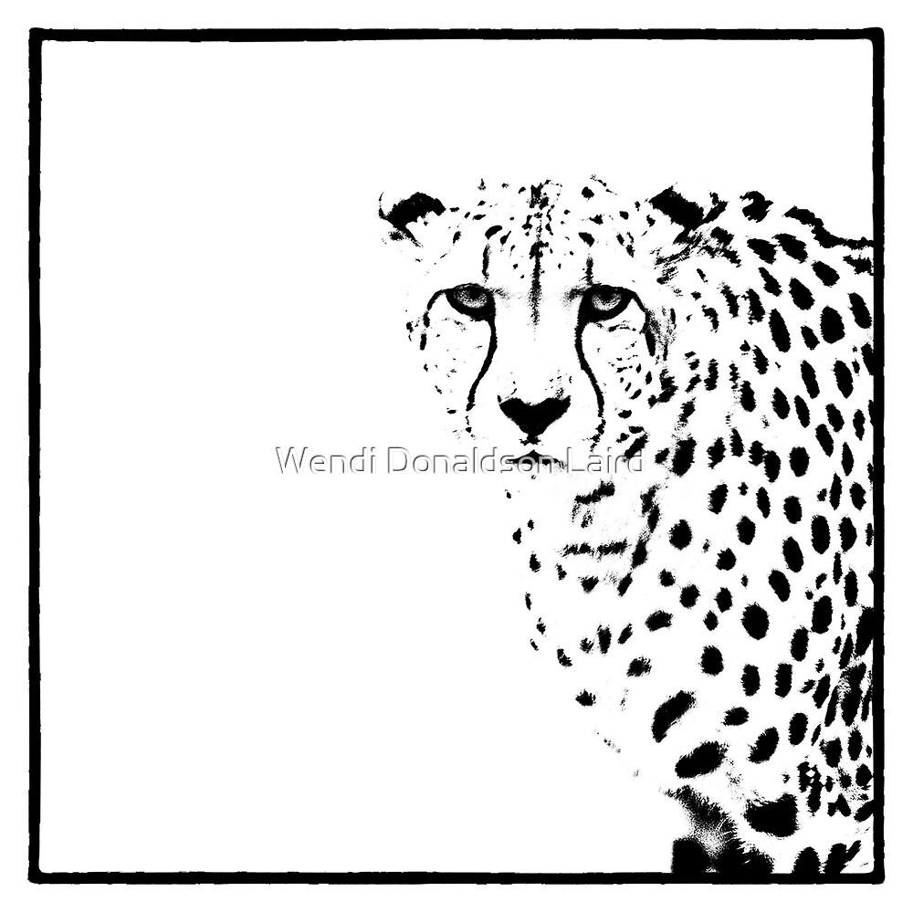 Cheetah by Wendi Donaldson Laird