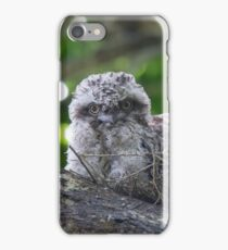Guess Who Went Out On A Branch iPhone Case/Skin