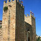 Gate of the City Walls, Alcúdia by Wayne Gerard Trotman