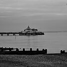 EASTBOURNE PIER by RED-RABBIT