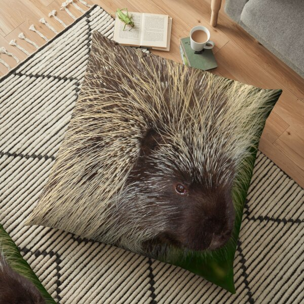 Fluffy Porcupine Floor Pillow