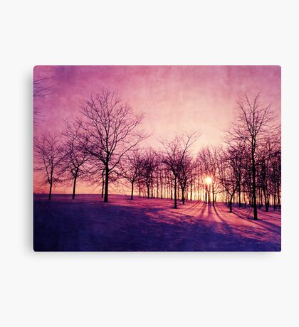 Before The Night Canvas Print