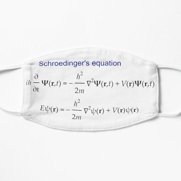 #Schrödinger #Equation,  #Quantum #Physics, Wave Function, Quantum Mechanics  Flat Mask